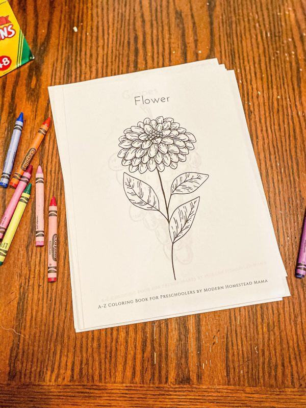 A-Z Coloring Book for Preschoolers Flower