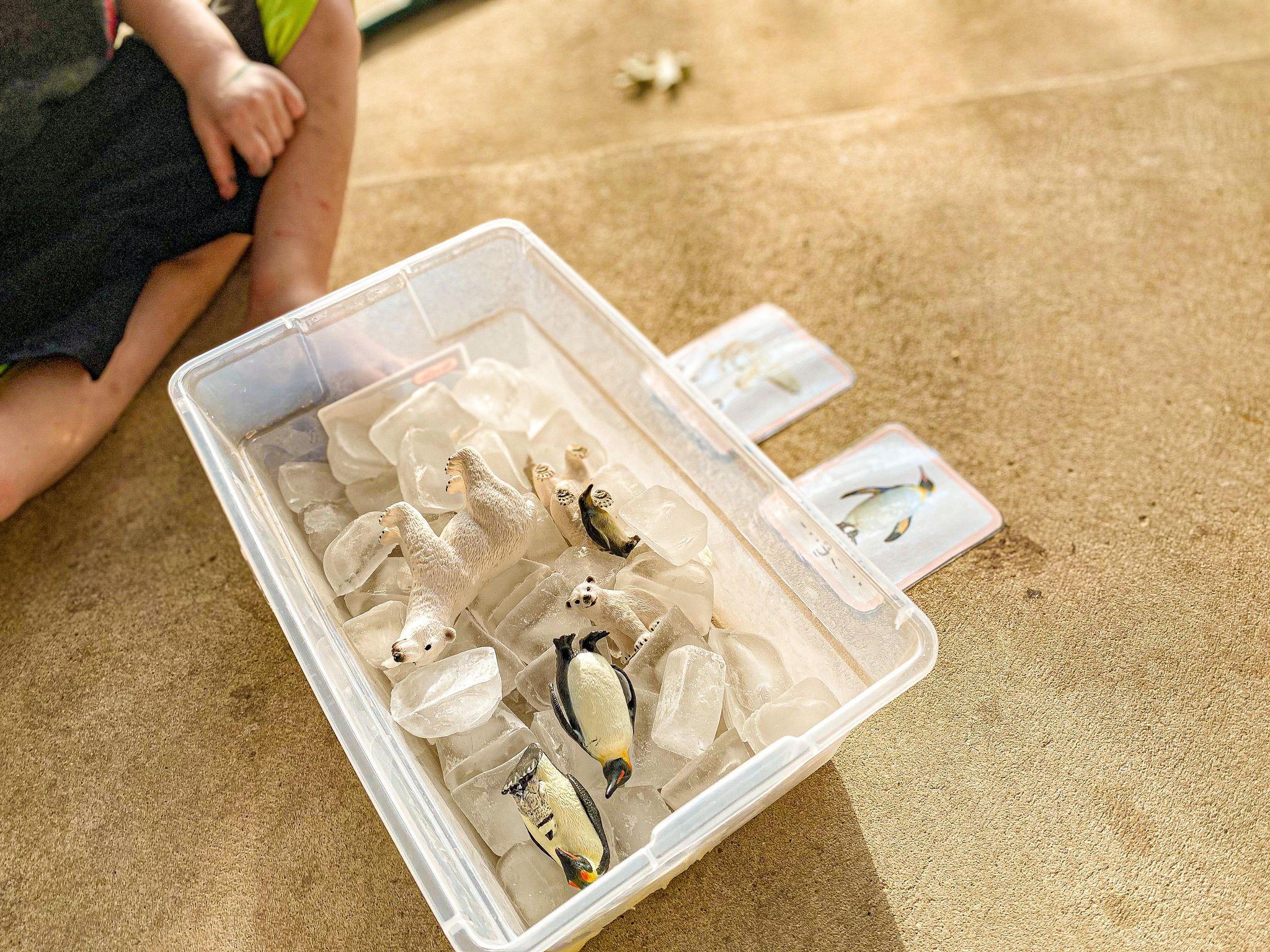 Arctic Sensory Bin Activity for Preschoolers