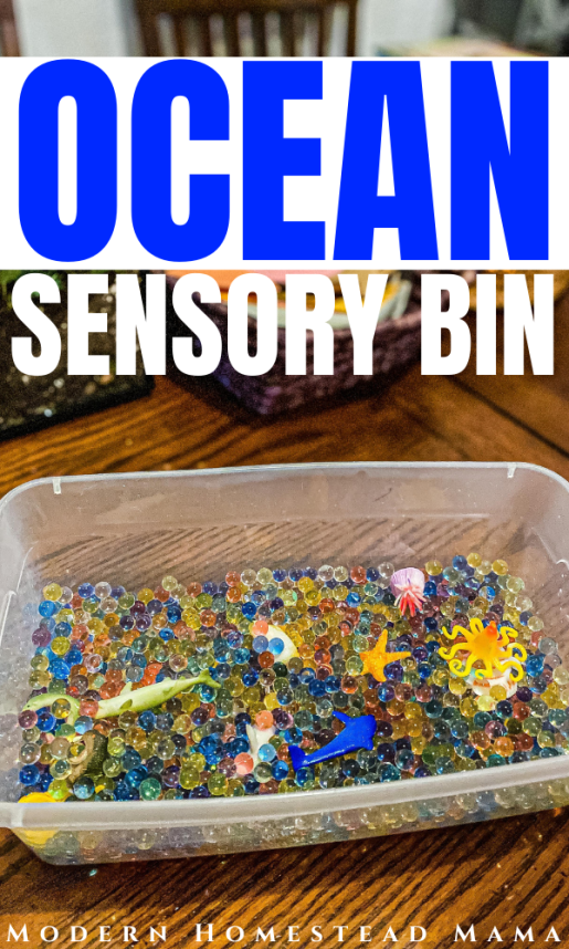 Ocean Sensory Bin Activity for Preschoolers | Modern Homestead Mama