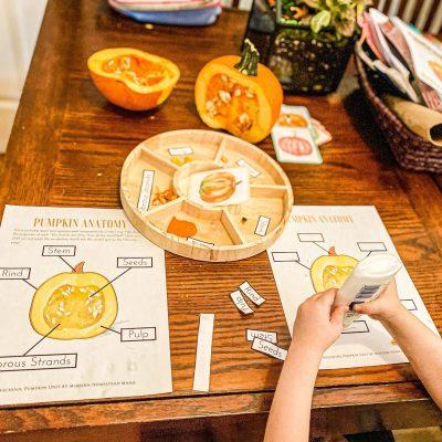 25 Pumpkin Activities for Preschoolers