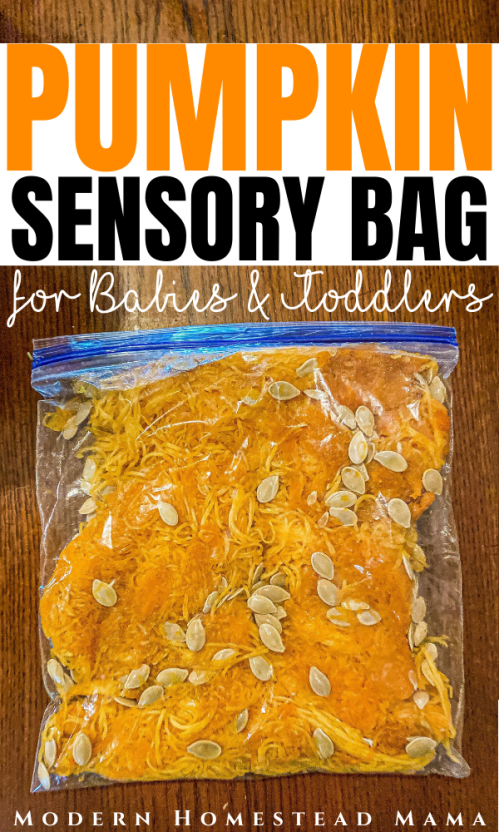Pumpkin Guts Sensory Bag for Babies & Toddlers | Modern Homestead Mama