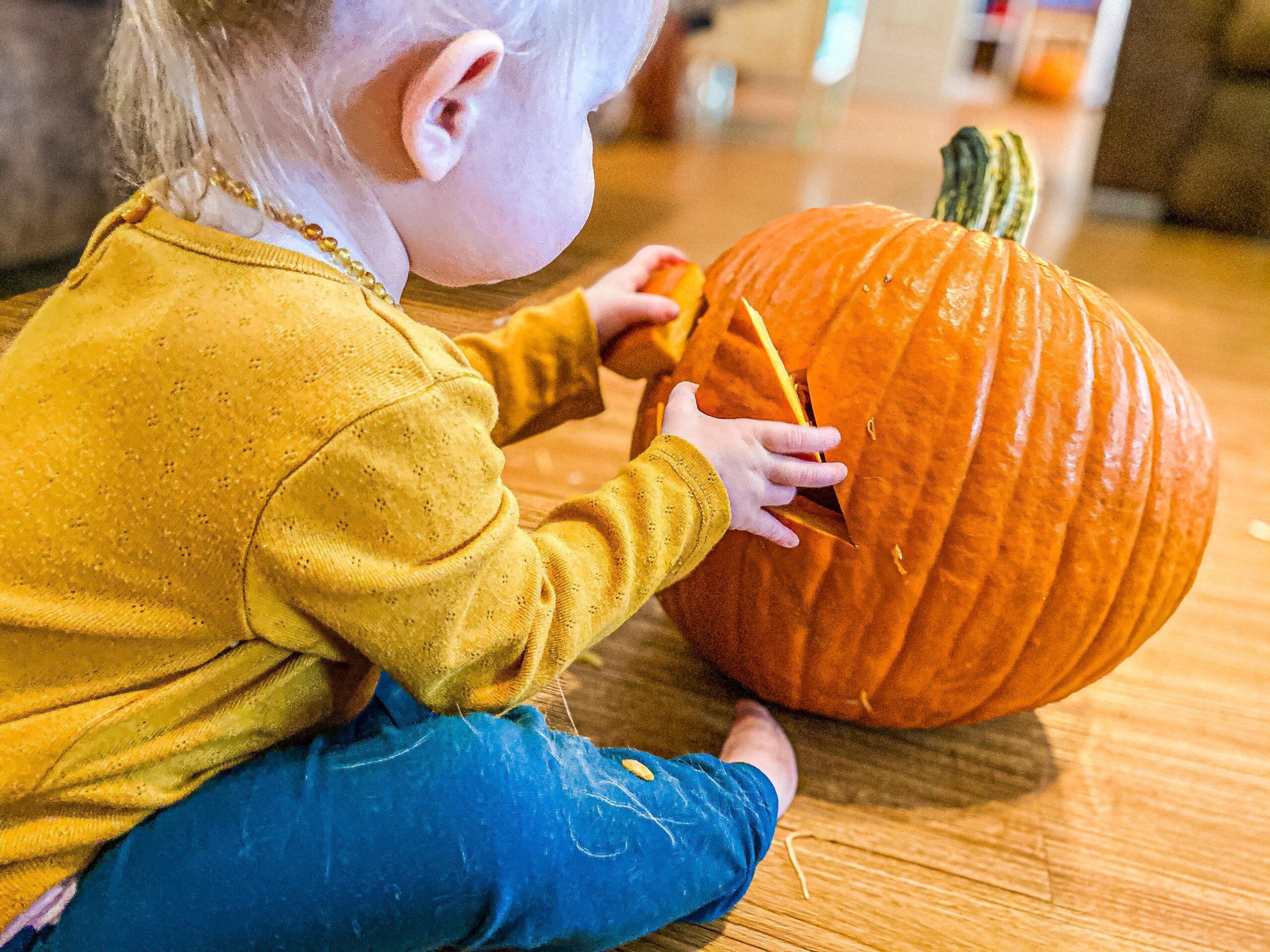 Pumpkin Shape Sorter for Toddlers