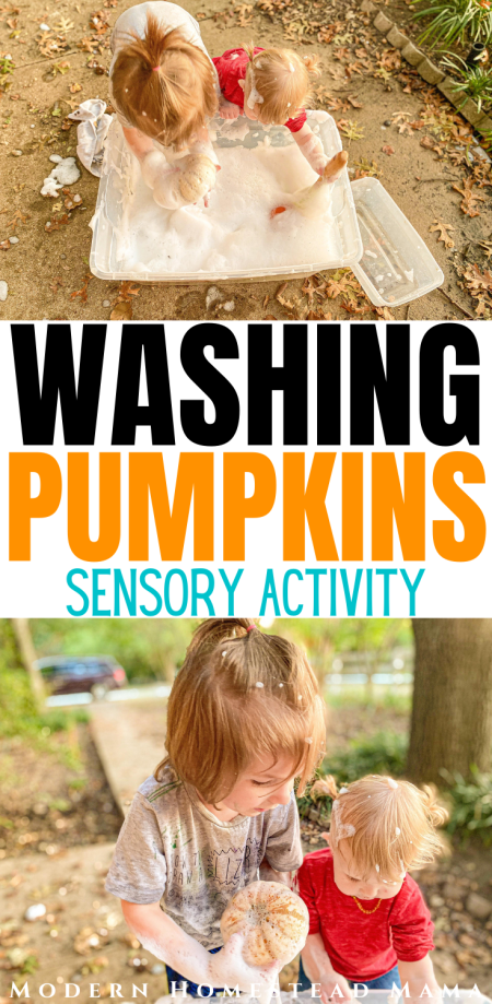 Washing Pumpkins Sensory Activities for Toddlers & Preschoolers | Modern Homestead Mama