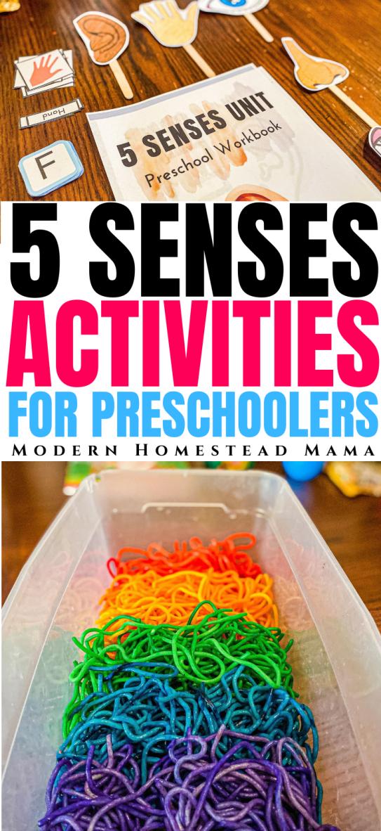 Five Senses Activities & Crafts for Preschoolers | Modern Homestead Mama
