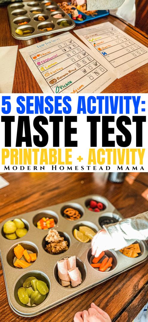 5 Senses Activity: Taste Test Survey Printable | Modern Homestead Mama