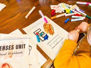 Five Senses Activities & Crafts for Preschoolers