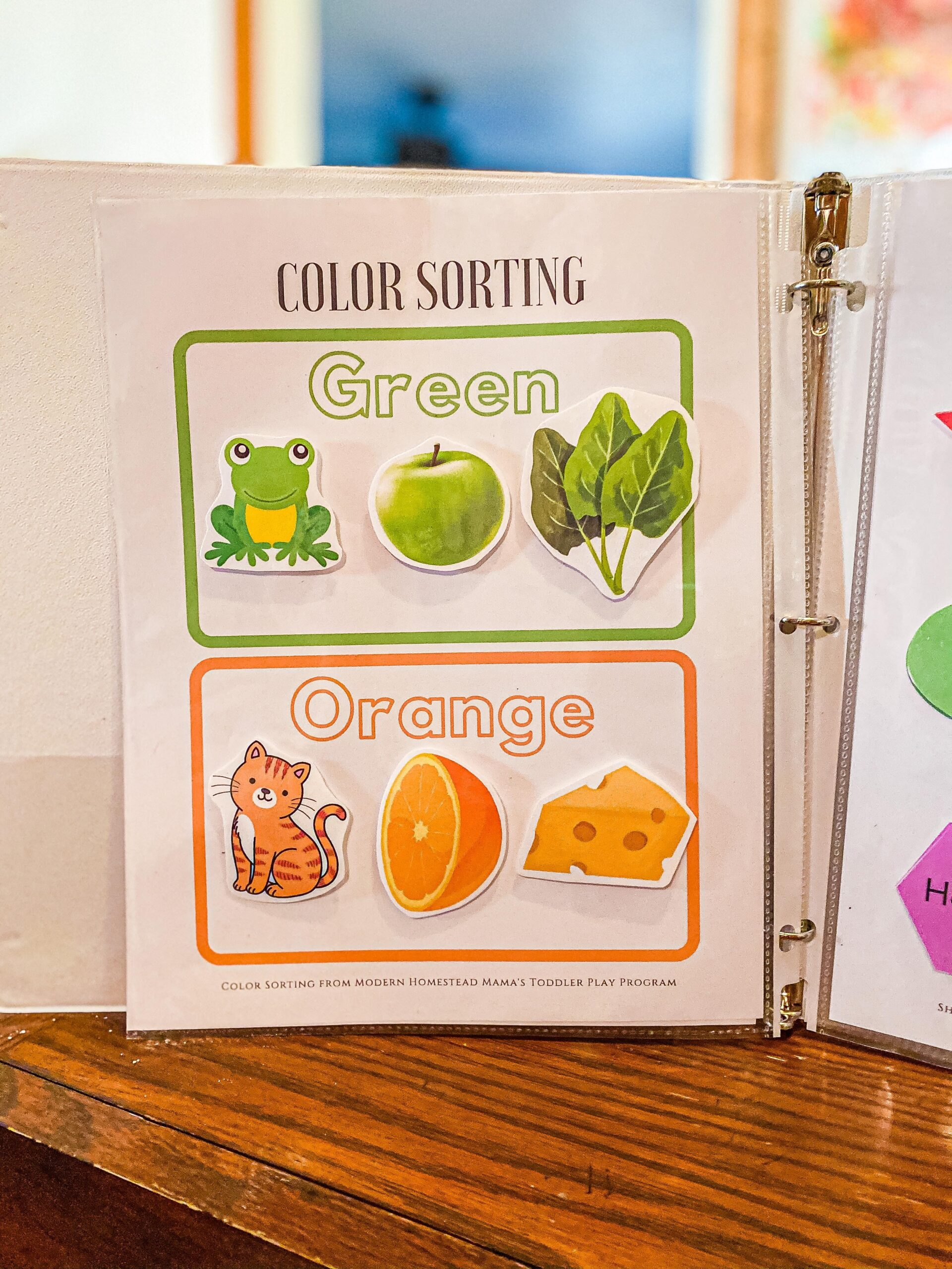 Color Sorting Worksheet Set for Toddlers Printable