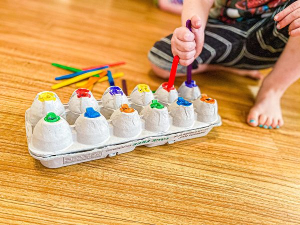 Egg Carton Color Sort with Craft Sticks Toddler Activity