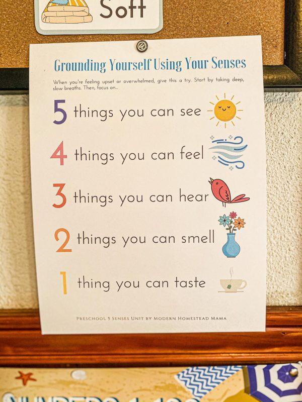 Five Senses Preschool Unit