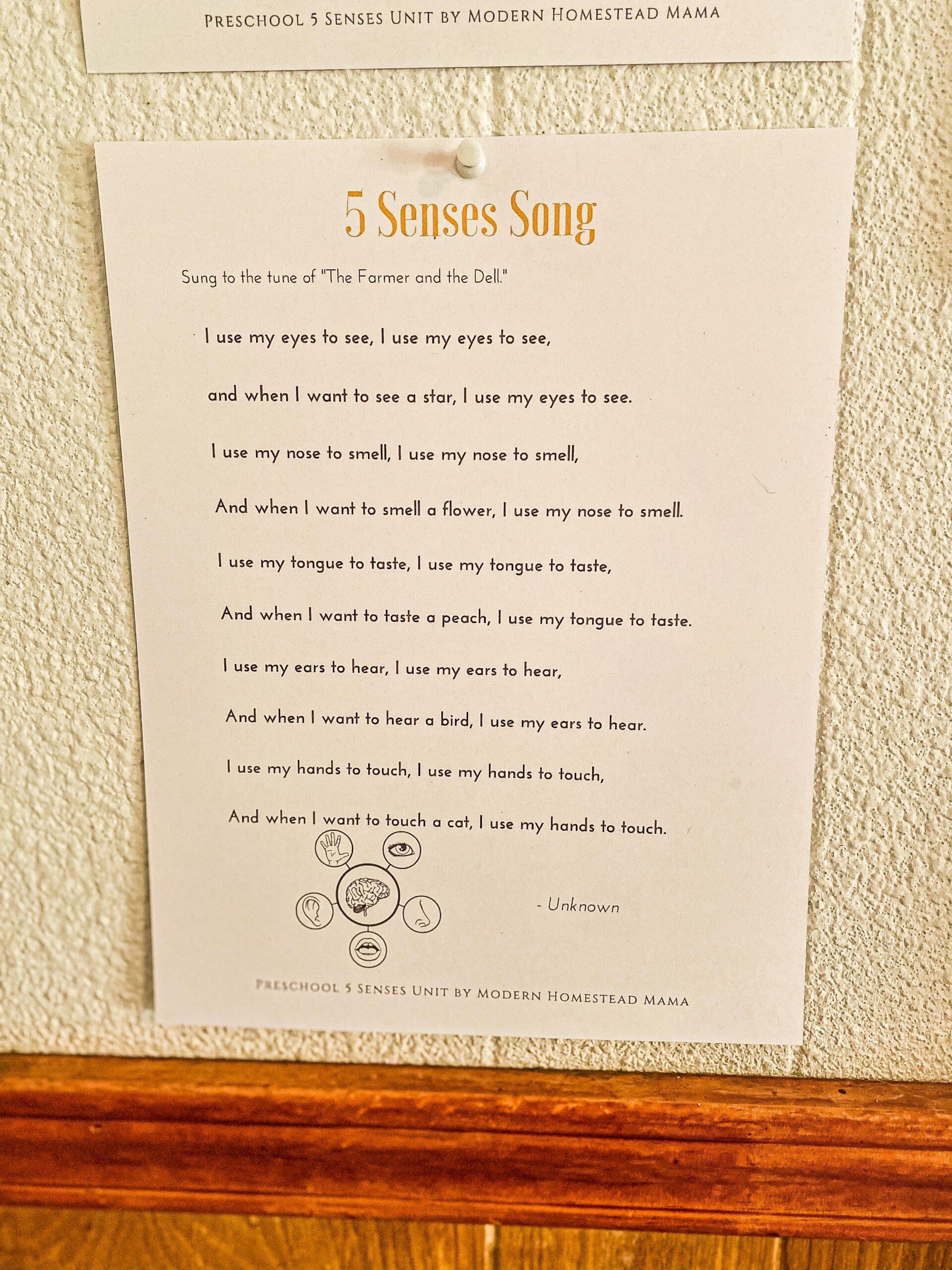 Five Senses Song for Preschoolers