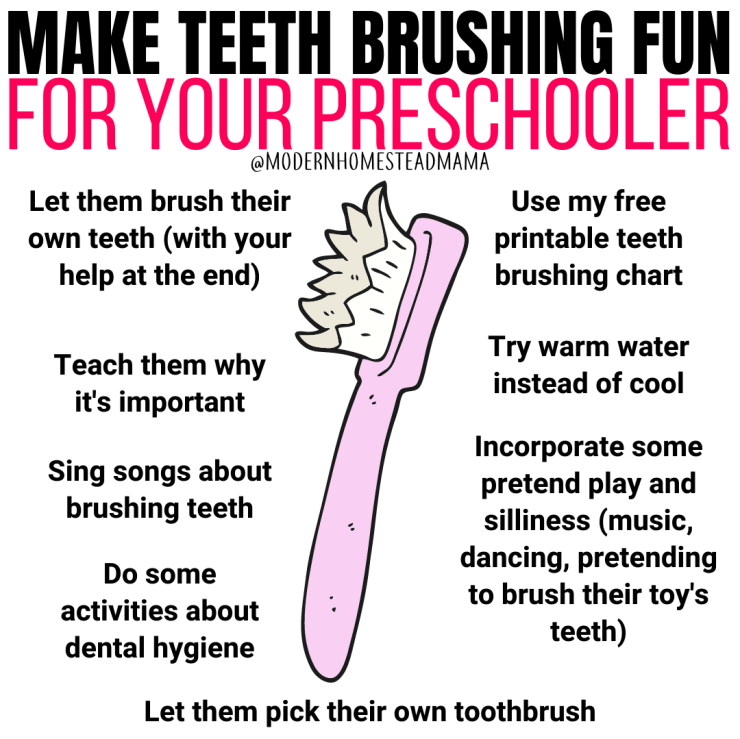 Make Teeth Brushing Fun for your Preschooler | Modern Homestead Mama