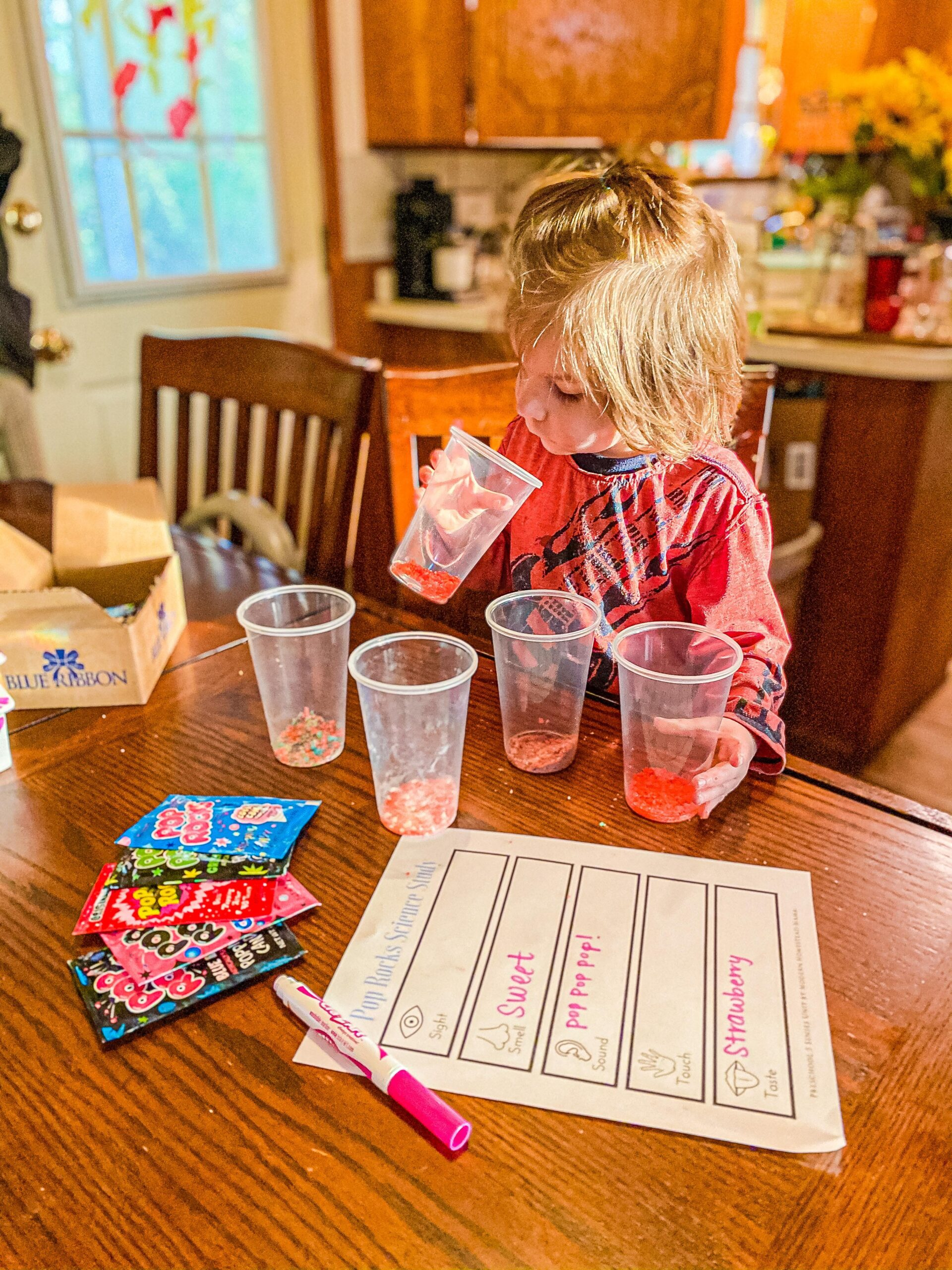 Pop Rocks Science Study + Printable Worksheet for Kids