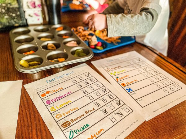 Taste Testing Activity with Printable Worksheet - 5 Senses Activity