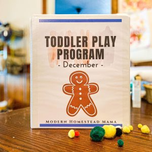 Toddler Play Program - December
