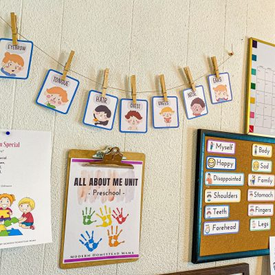 All About Me Preschool Theme Activities and Crafts