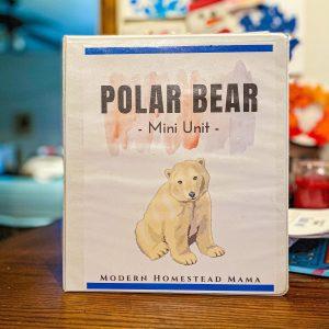 Polar Bear Homeschool Mini Unit