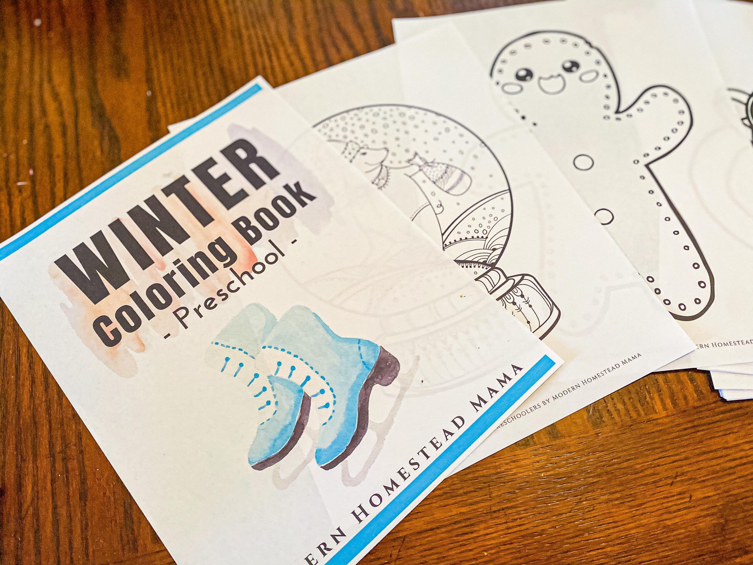 Winter Coloring Book