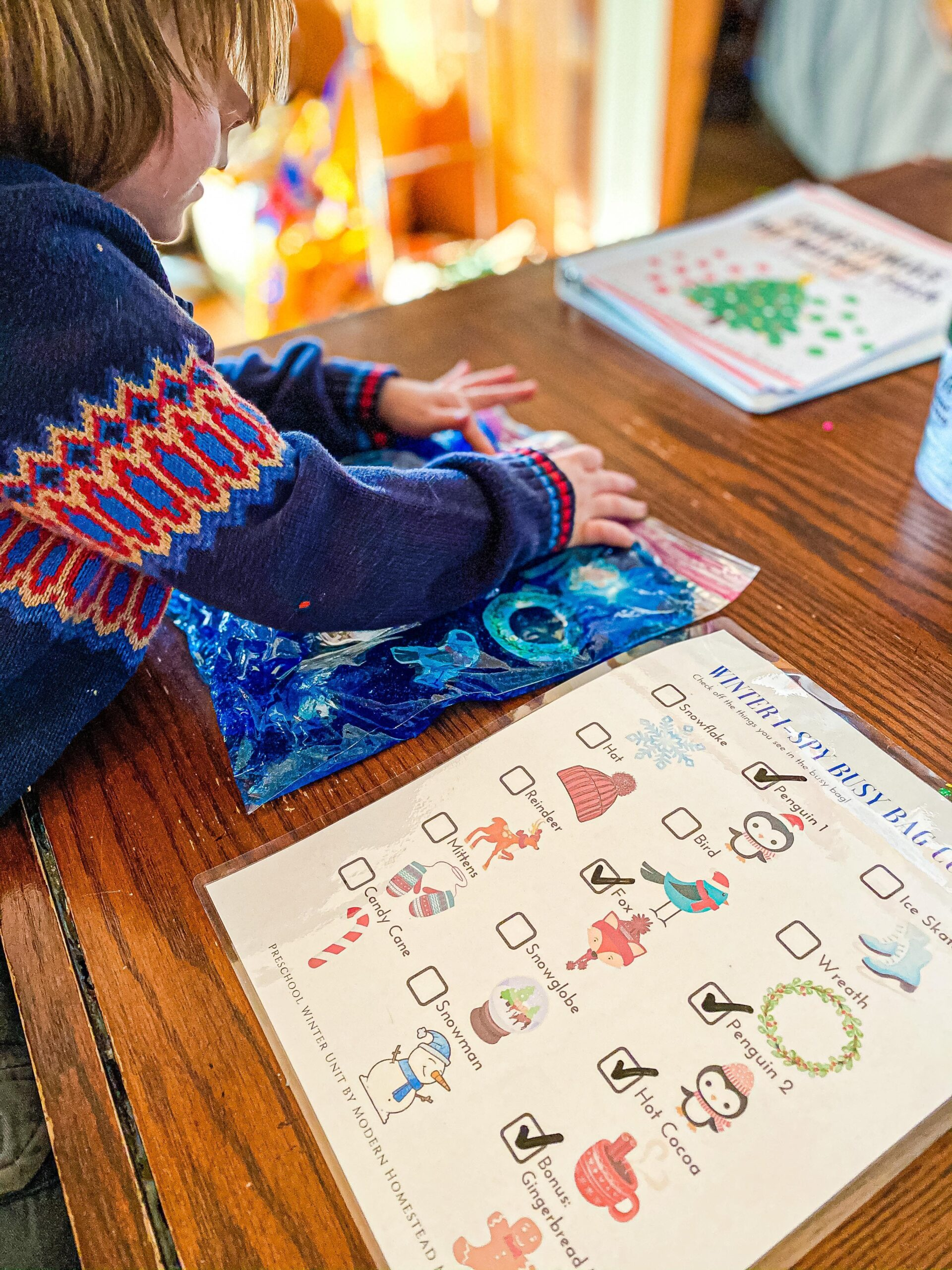 Winter I-Spy Busy Bag for Preschoolers