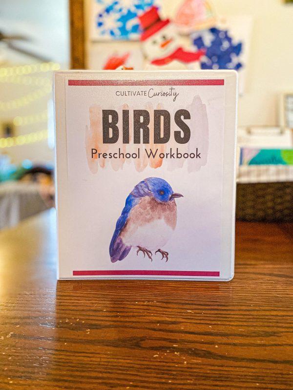 Bird Preschool Workbook for Homeschool Pre-K