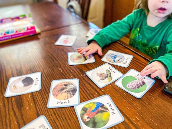 Bird Sounds Listening Activity for Homeschool Bird Unit