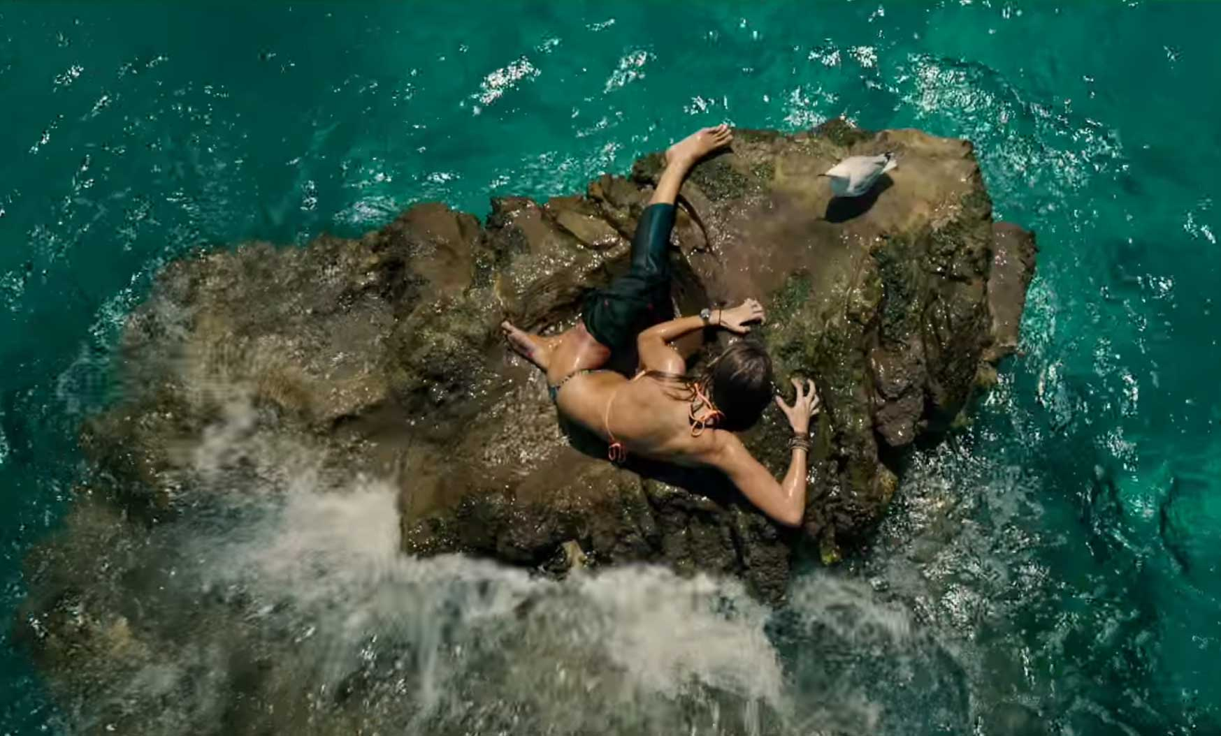 'The Shallows' is Getting a 4k HDR BluRay Release In September - Modern Horrors
