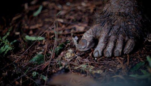 Primal Rage: Witness The Rebirth Of Bigfoot On The Bigscreen