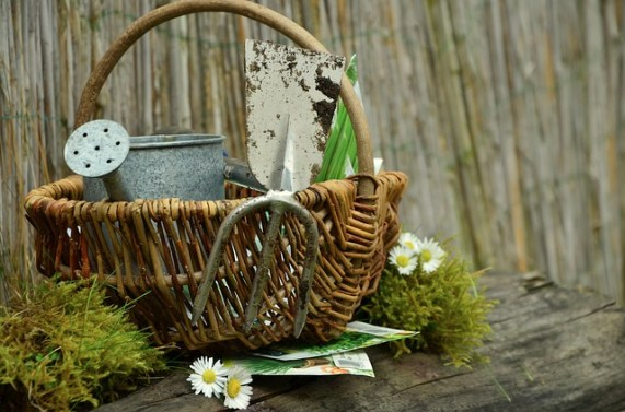 Gardening tools in a basket