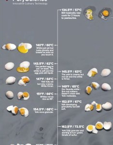 Eggsousvide cooking temperature guide by polyscience culinary also egg sous vide chart jonah   modernist cookingjonah rh