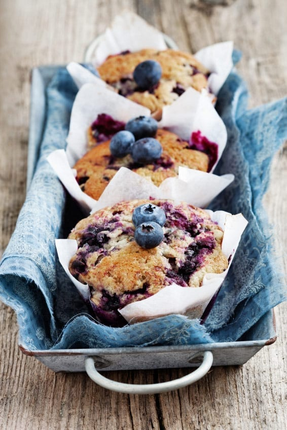 blueberrymuffinslong