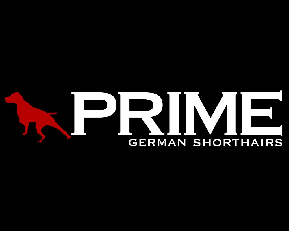 Prime Shorthairs Logo