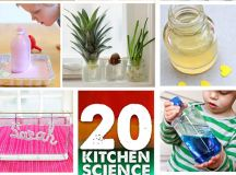 STEM Activity: 20 Kitchen Science Project for Kids to Try ...