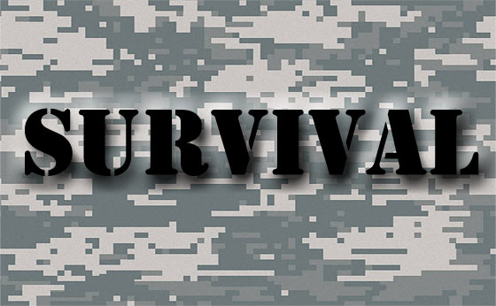 definition-of-survival