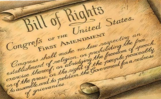 Image result for free speech congress should make no law