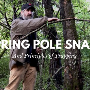 Principles of Trapping and the Spring Pole Snare