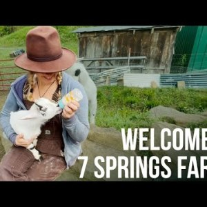 Welcome to 7 Springs Farm | ON Three