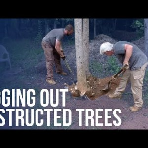 Digging Out Obstructed Trees | Forest to Farm