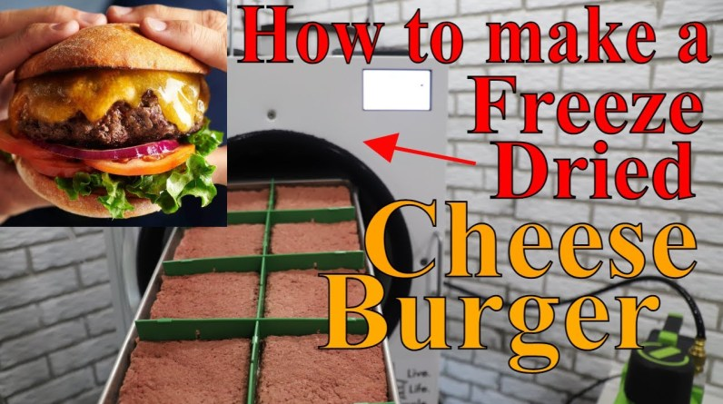 How to Make a FREEZE DRIED CHEESEBURGER-- w/ Raw Ground Beef