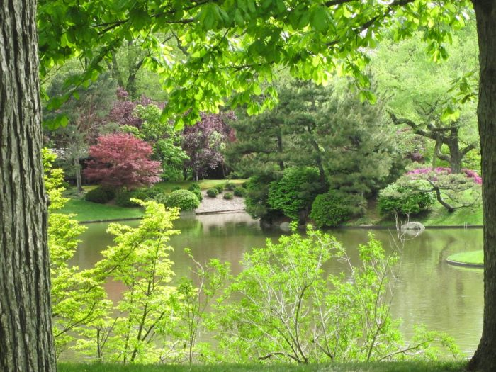 The Japanese Garden at the Missouri Botanical Garden