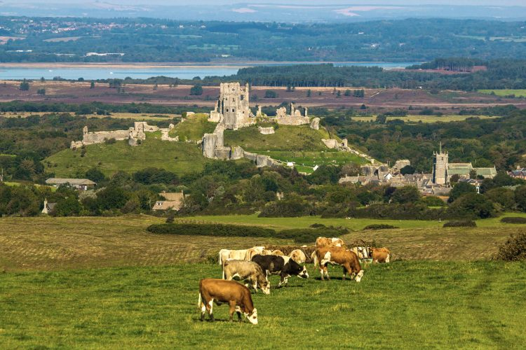 Corfe Castle, Castle to Visit in England