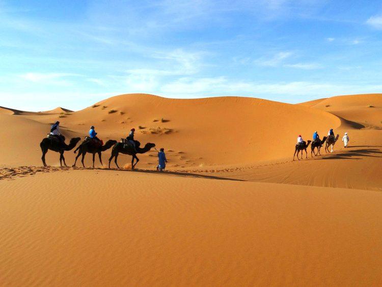 Riding camels toward Erg Chebbi, Merzouga
