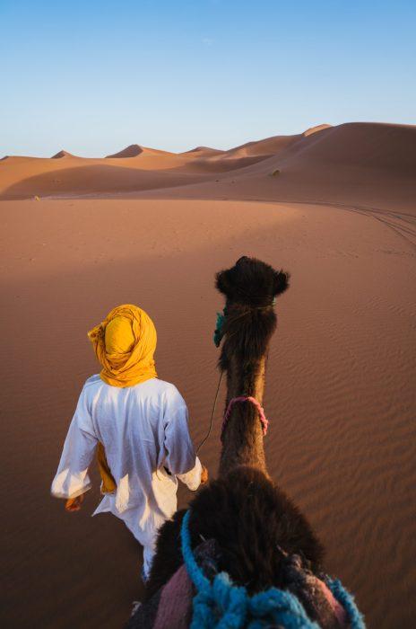 Don't Underestimate The Desert