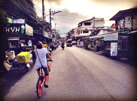 Rent bikes to go everywhere in Chiang Mai