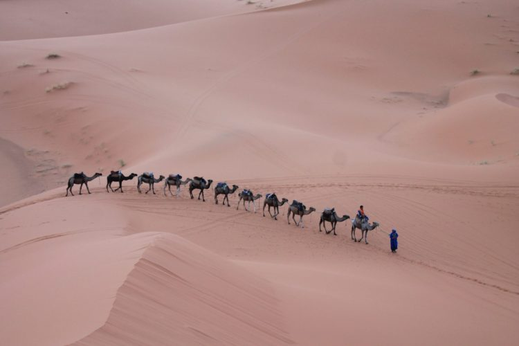 The Desert Sand Dunes, Marrakesh, Top Sights In Morocco You Need To See
