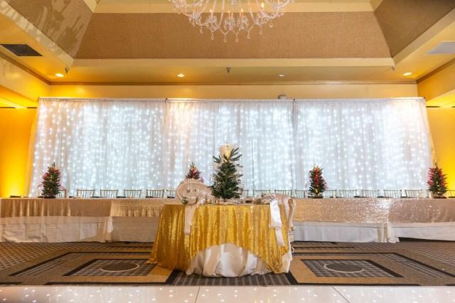 winter Pennsylvania wedding
