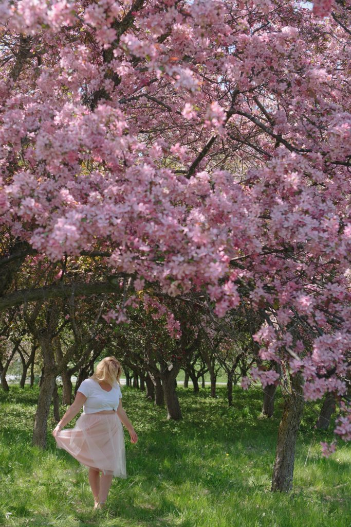Chantal 5 Ottawa Fashion Blog Curvy Plus-Size photos lincoln fields cherry blossom pink trees
