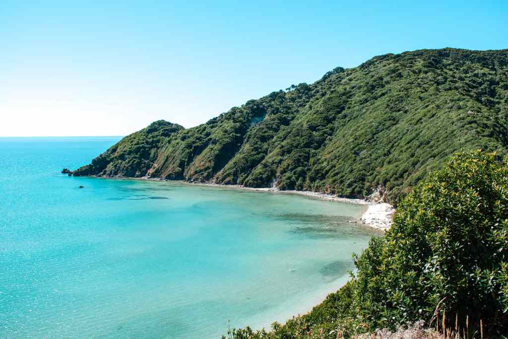 A view from the top of the first ridge of the Abel Tasman National Park trail. The trail carves out a deep section of the hillside as it wraps around the top of the hill.