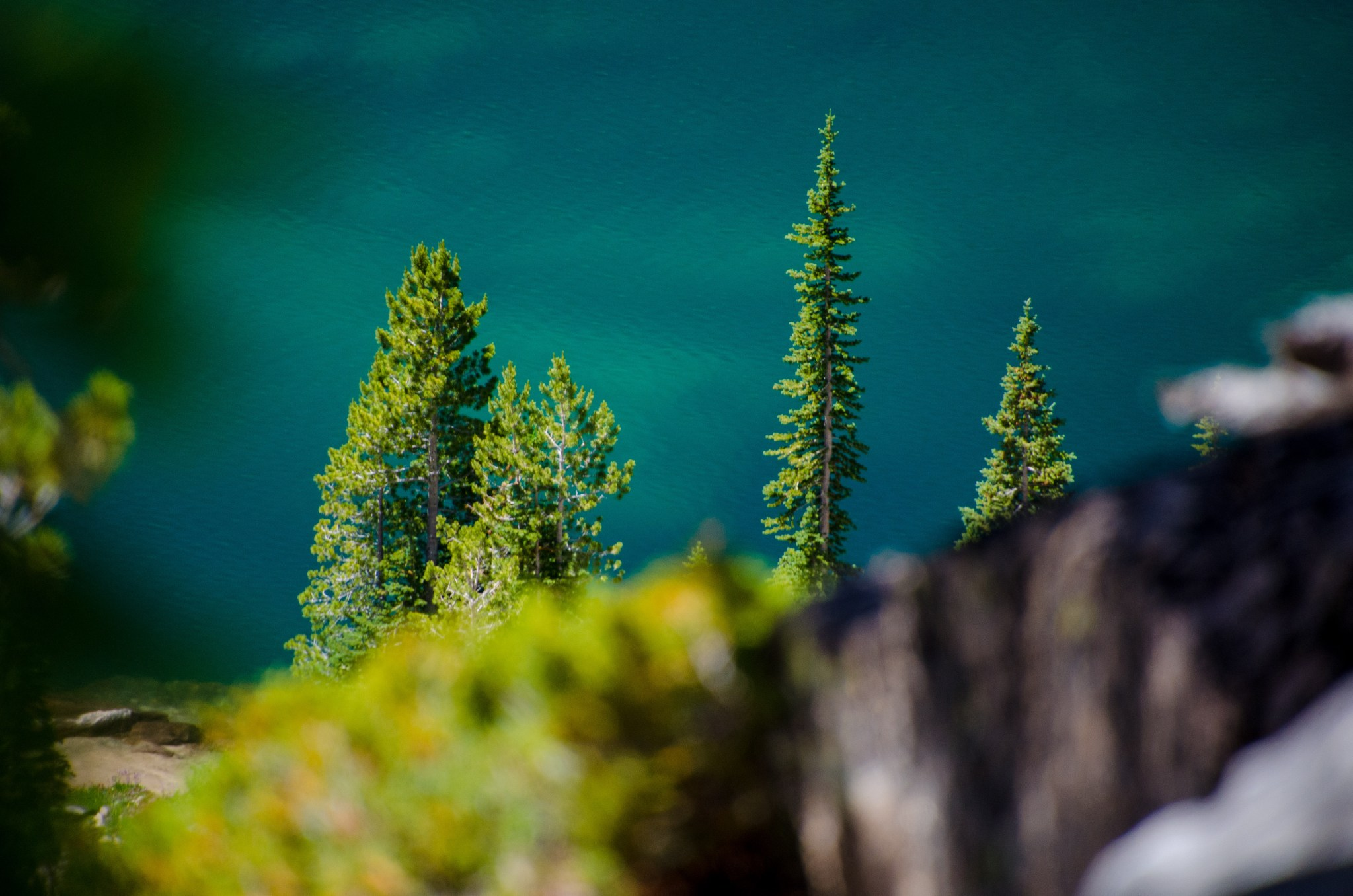 A view of alpine trees along the shore of upper Baron Lake in Idaho's Sawtooth National Recreation Area.