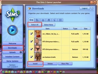 Sims 3 Launcher Install
