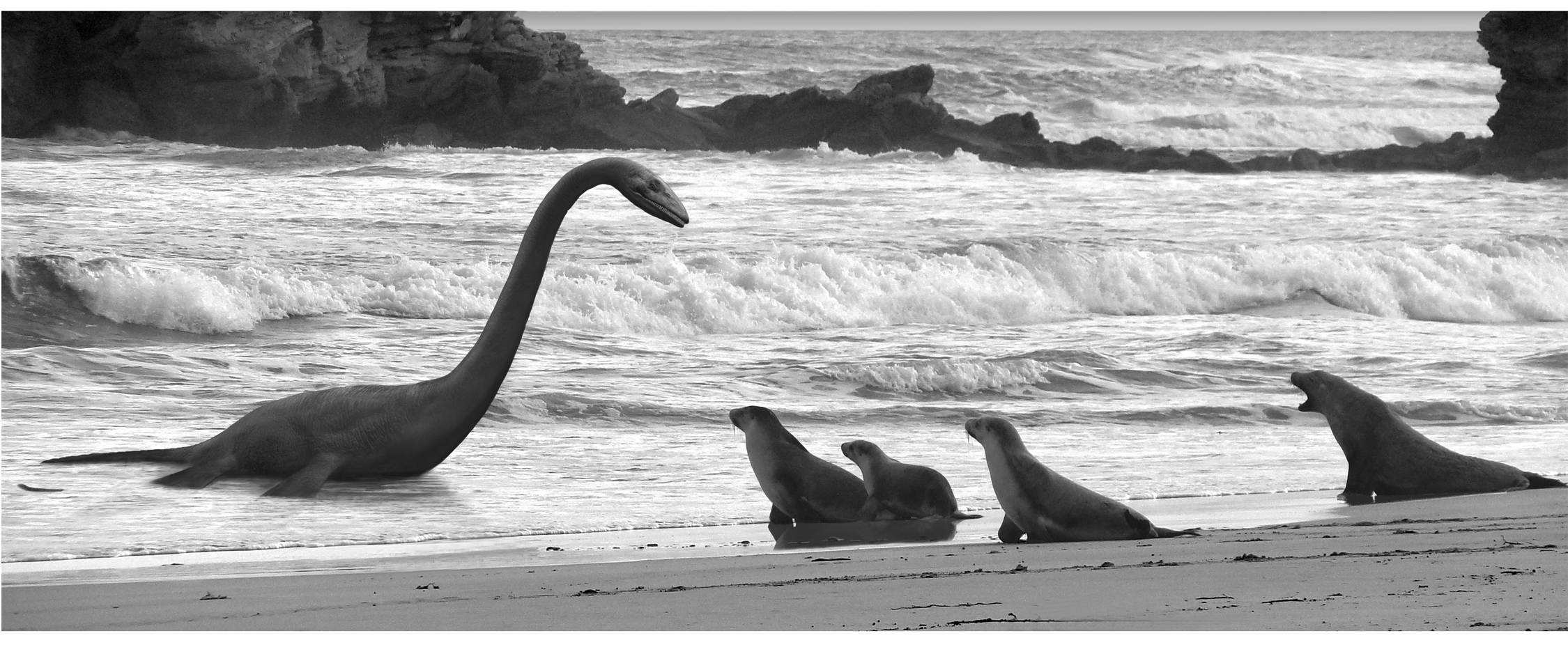 small living room with no coffee table framed pictures for plesiosaurus vs. sea lions… edition ...