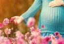 Modlitba k Panne Márii z Knock za deti v matkinom lone